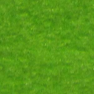 giftgrün